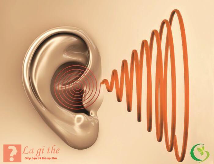 Cấu trúc bệnh ù tai