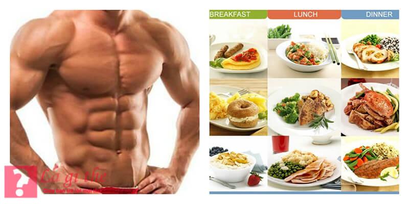 Protein là một phần quan trọng của cơ thể con người
