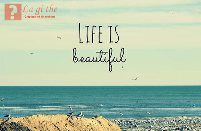 Ý nghĩa cuộc sống là gì?