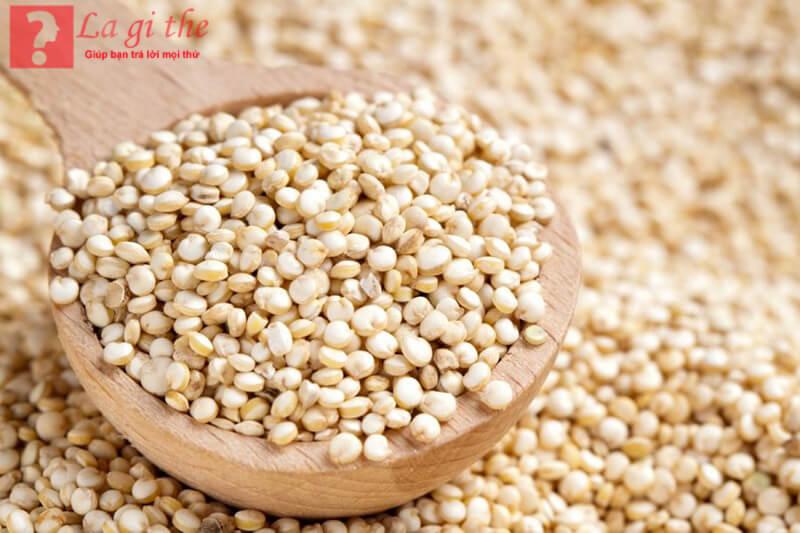 Hạt quinoa mang lại những giá trị cao cho sức khỏe.
