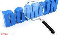 Domain là gì? Các thành phần của một domain bạn nên biết