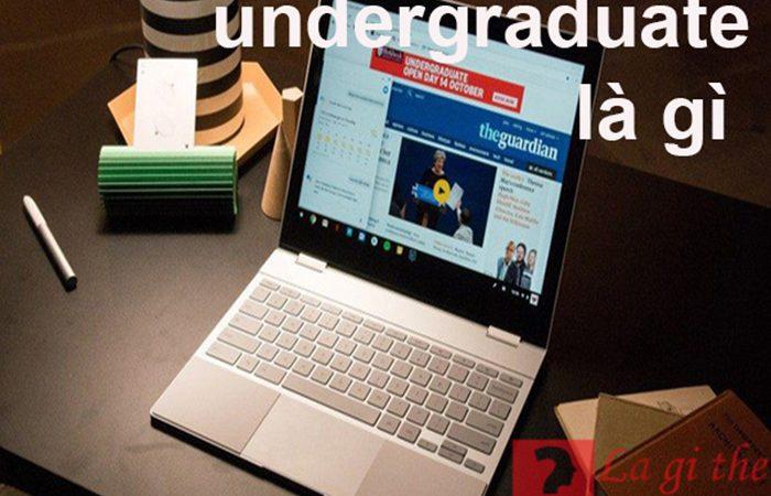 Undergraduate là gì – Định nghĩa theo từ điển Anh-Việt đúng nhất