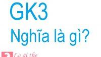 GK3 là gì – Cùng tìm hiểu nguồn gốc và những biến thể của nó