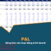 P&L là gì trong toán học, kinh tế học và xuất nhập khẩu.