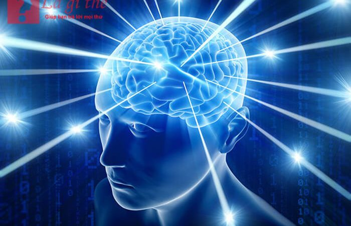 Ý thức là gì? Các thuộc tính cơ bản của ý thức con người .