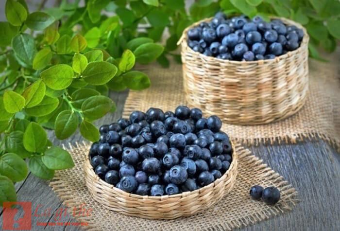 blueberry là quả gì?
