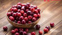 Cranberry là quả gì, có mang lại lợi ích gì cho sắc đẹp hay không