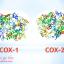 Tác dụng trong điều trị bệnh dạ dày của thuốc COX 1 là gì?