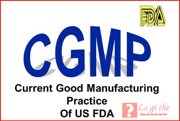 Giấy chứng nhận GMP