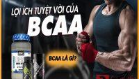 BCAAlà gì? Lợi ích BCAA mang lại trong quá trình tập luyện