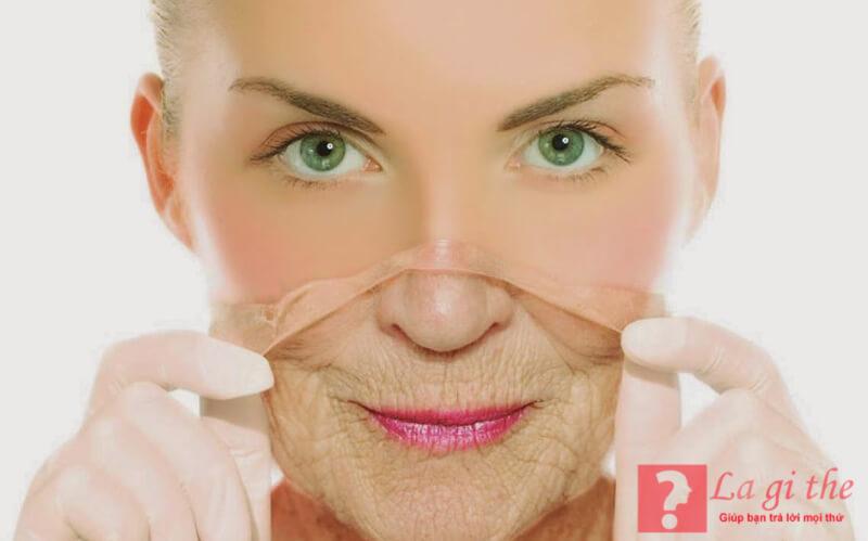 Collagen là thành phần không thể thiếu của cơ thể