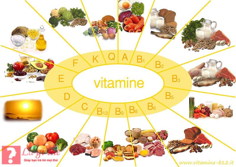 Vitamin gồm có 2 loại cơ bản nhất