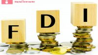 FDI là gì? Đặc điểm của FDI trong nền kinh tế hiện nay