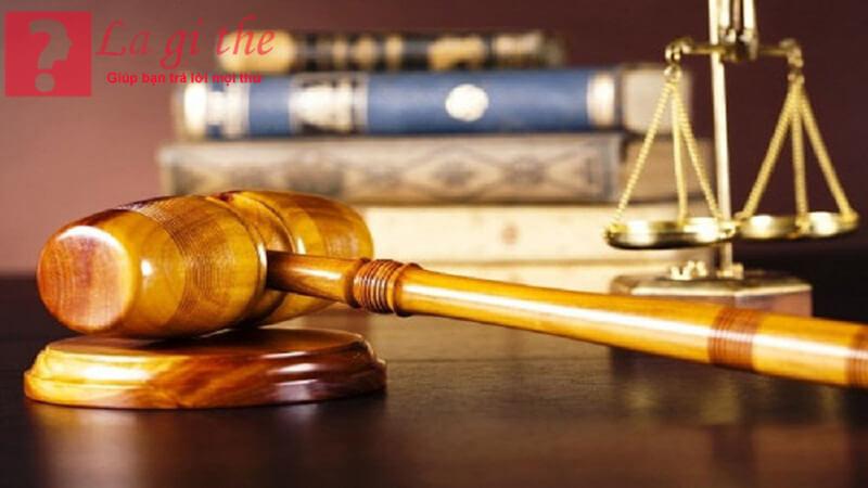 Pháp luật là quy tắc xử sự chung cho tổ chức,cá nhân
